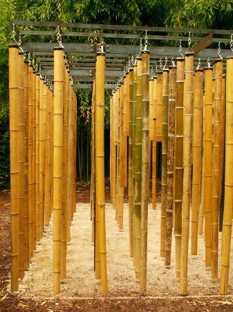 medium_jardin24b.jpg