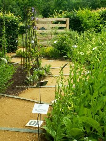 medium_jardin29a.jpg