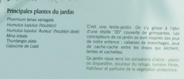 medium_jardin4.jpg