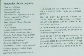 medium_jardin8.2.jpg